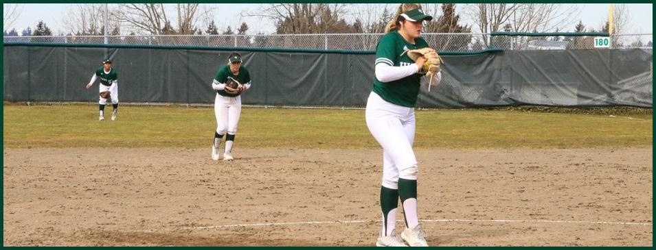 Women Softball Action Photo