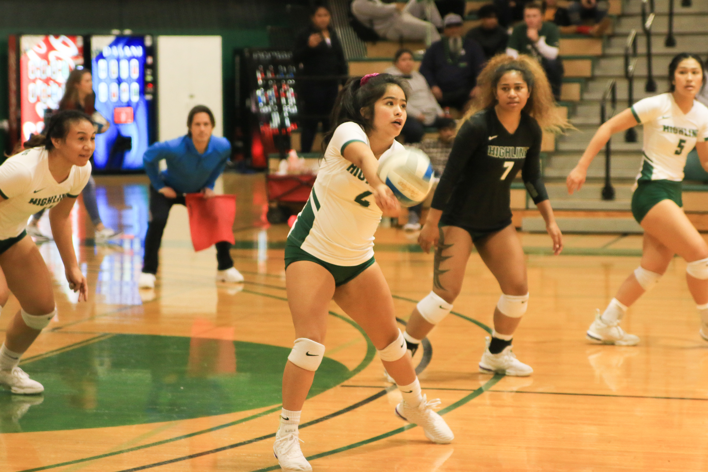 Women's Volleyball Action Photo Home Page Gallery