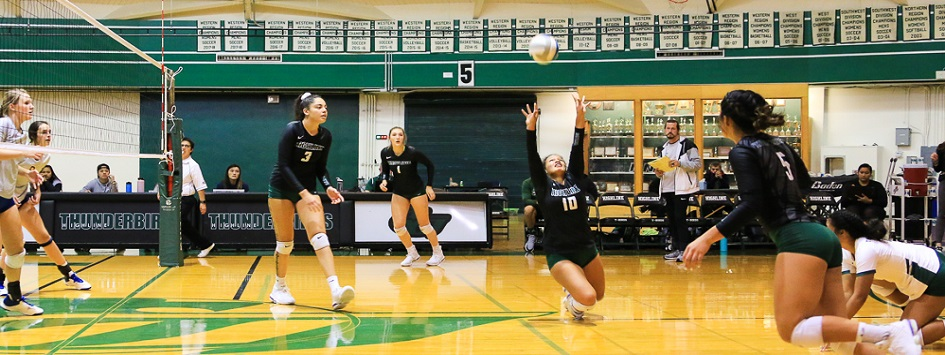 Women's Volleyball Action Photo