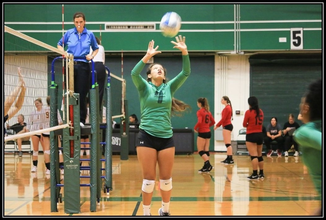Womens Volleyball Action Photo