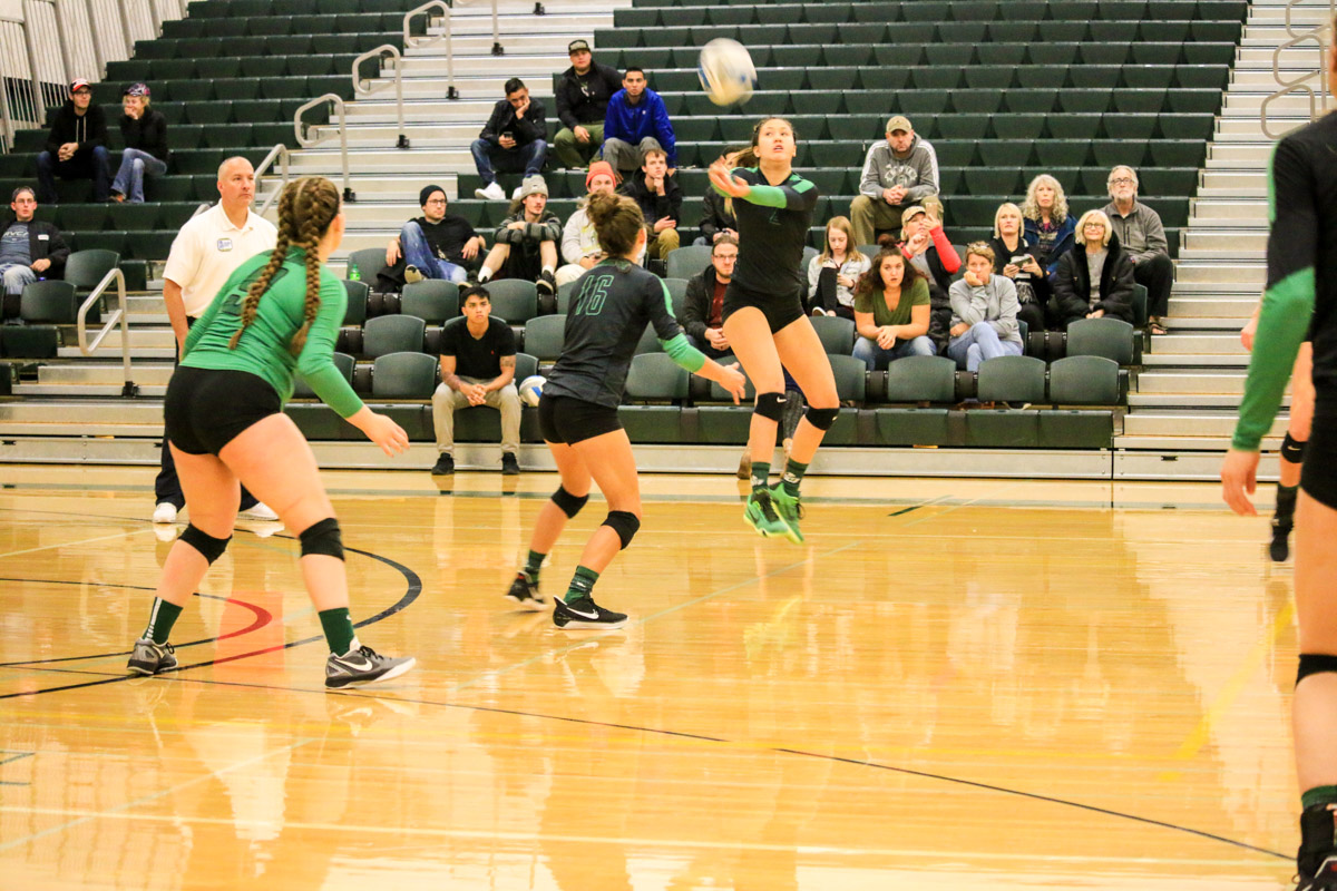Volleyball Action Photo